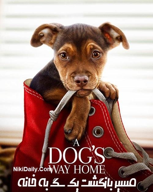 دانلود فیلم A Dog's Way Home 2019 با دوبله فارسی و زیرنویس فارسی