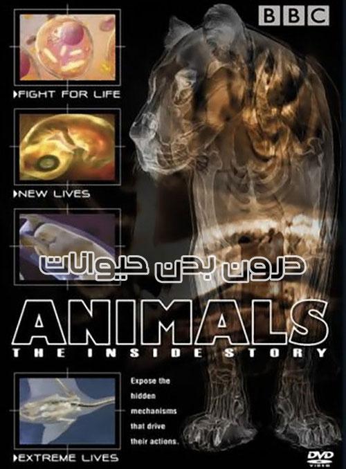 دانلود مستند درون بدن حیوانات Animals The Inside Story 2002 با دوبله فارسی