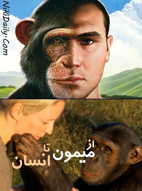 دانلود مستند از میمون تا انسان با دوبله فارسی