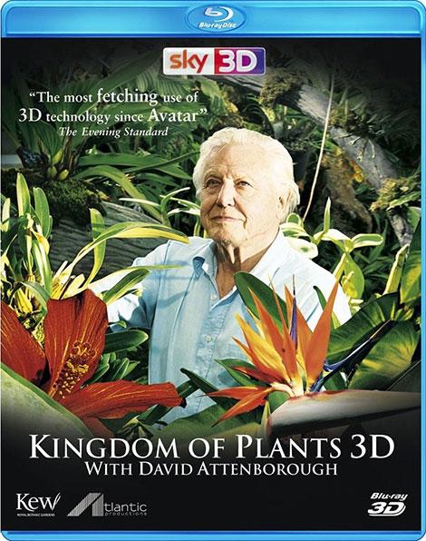 دانلود مستند قلمرو گیاهان Kingdom of Plants 2012 با دوبله فارسی