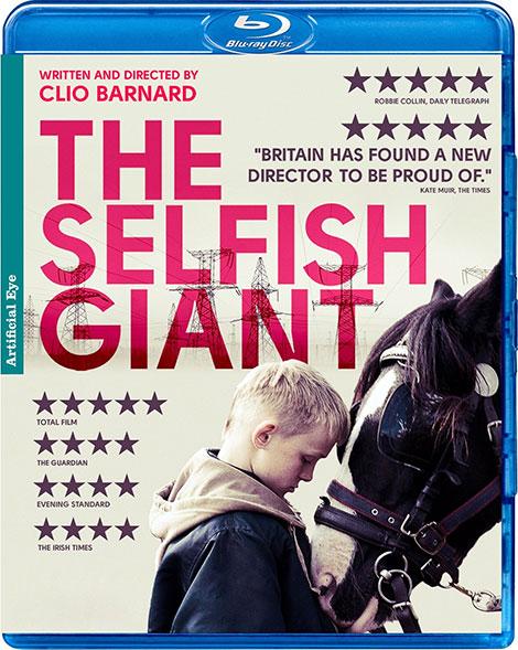 دانلود فیلم غول خودخواه The Selfish Giant 2013 با دوبله فارسی و زیرنویس فارسی