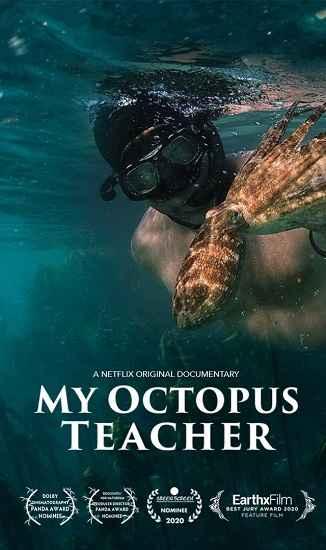 مستند My Octopus Teacher 2020 min
