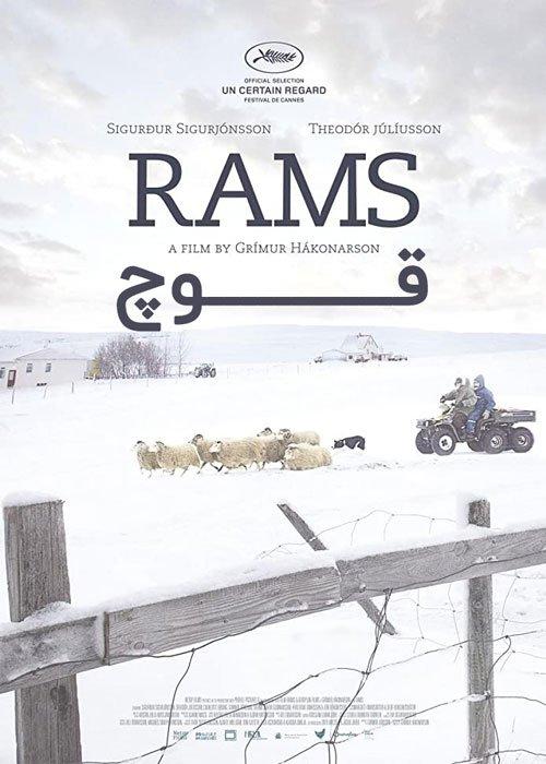 دانلود فیلم Rams قوچ 2015 با زیرنویس چسبیده فارسی